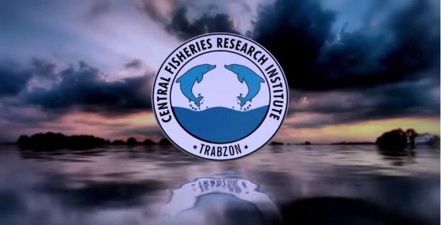 В состав редколлегии журнала вошел директор Центрального научно-исследовательского института рыбного хозяйства Турции