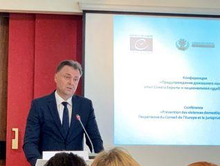 Адвокат Степанова Е.И. на конференции по предупреждению домашнего насилия
