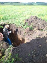 Глубокий анализ почвы