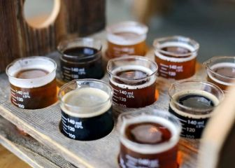 Пиво, сидр, вишневое пиво, классика, лагеры, крафтовые сорта, стауты и многое другое